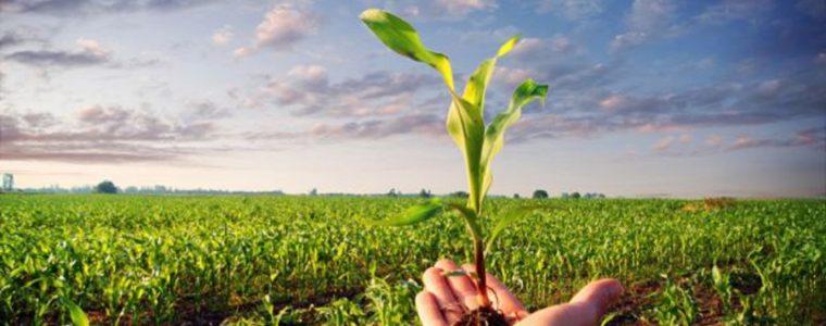 INVESTIMENTI NELLA CREAZIONE E SVILUPPO DI ATTIVITÀ EXTRA-AGRICOLE